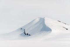 Spitsbergen bijna zwart/wit